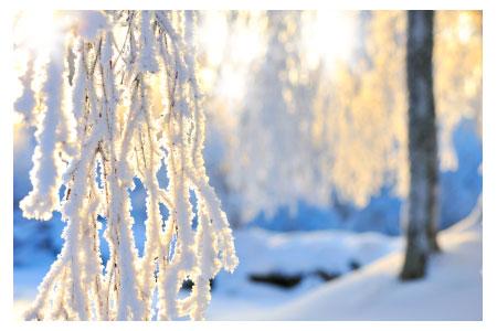 image de givre et de neige