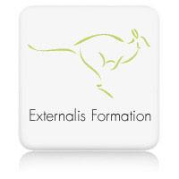 Optimisation du référencement pour Externalis Formation
