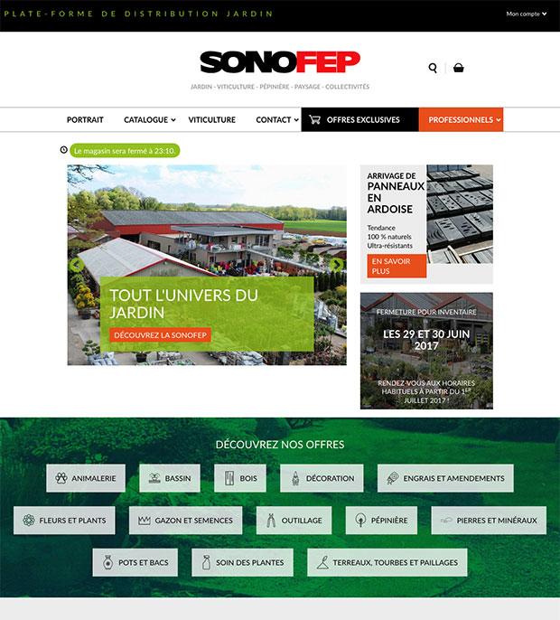accueil site internet sonofep
