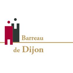 Les avocats du barreau de Dijon se propulsent sur Internet