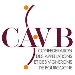 logo cavb