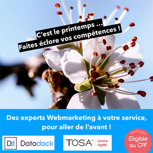 formation webmarketing Dijon